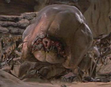 Starship Troopers Brain Bug